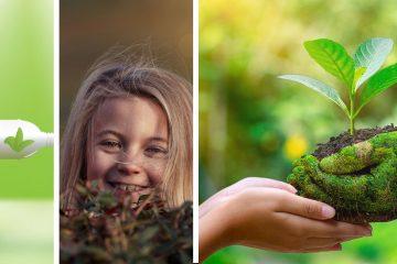 6 Razones para Cuidar el Medio Ambiente | Naturaleza es Vida